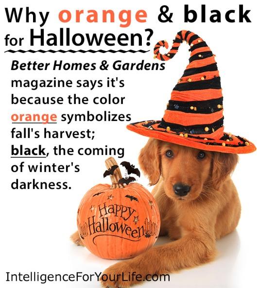 Why-orange-and-black-for-halloweenIFYL