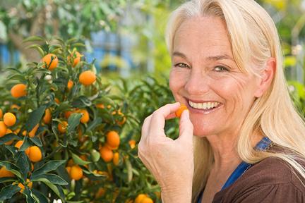 kumquats-wp