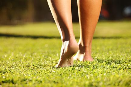 walk-barefoot-wp