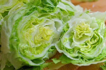 iceburg-lettuce-wp