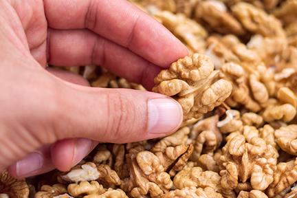 walnuts-at-work-wp