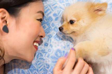 happiness-boost-look-in-dog-eyes-wp