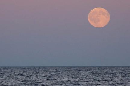 pink-full-moon-wpMon.4.10.2017