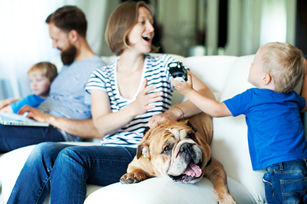 allergy-family-dog-wp