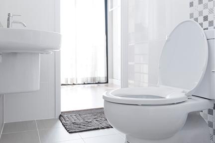 lies-toilet-wp