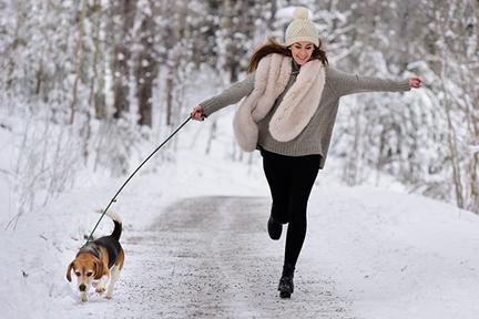 workout-walk-dog-wp