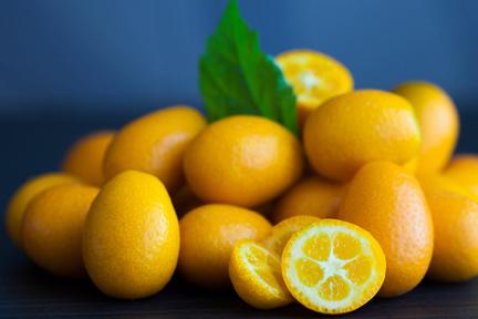 kumquats2-wp