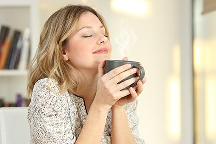 daily-coffee-wp