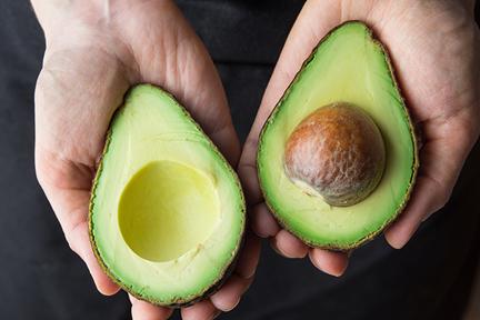 avocado-daily-wp